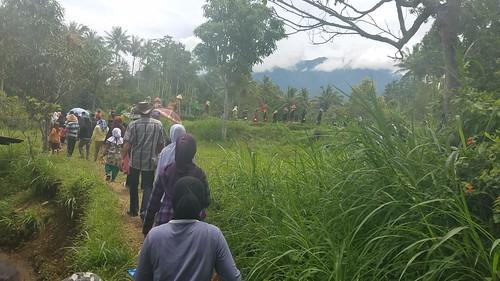 Pacu jawi West Sumatra