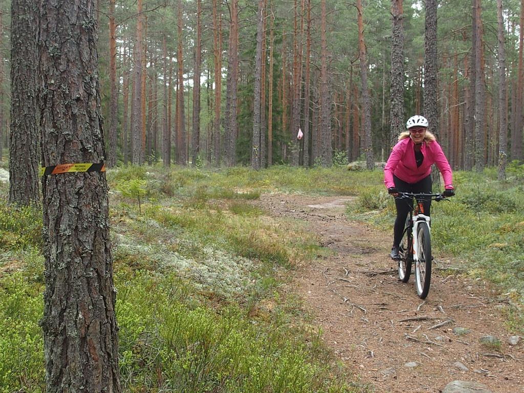 Korsning för Orienterare, vandrare och MTB cyklister