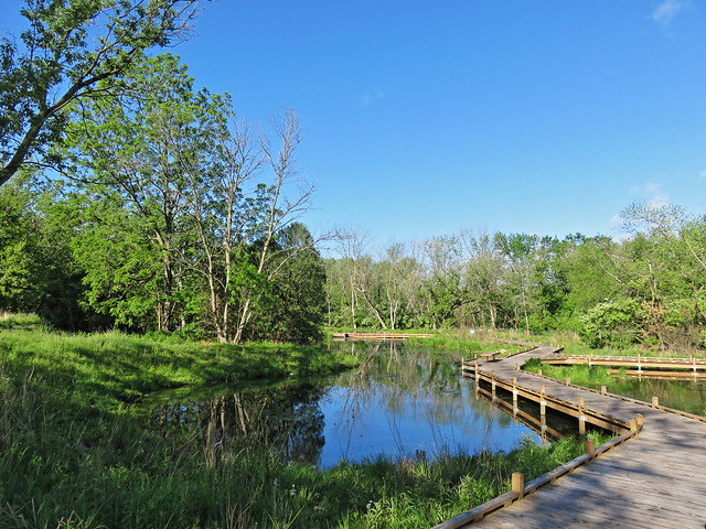 Lippold Park boardwalk 01-20170521