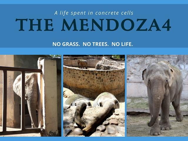 B4G homepage mendoza 4