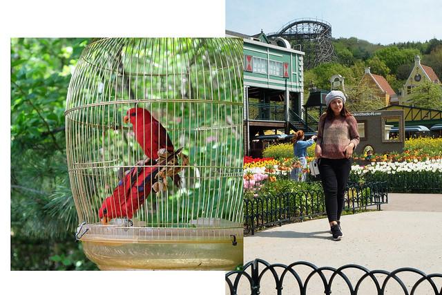 4 Patty Villegas - The Lifestyle Wanderer - Seoul - Korea - Wendys - Kimchi Chicken Fillet - Everland -4