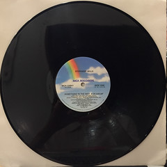 STEPHANIE MILLS:SOMETHING IN THE WAY(YOU MAKE ME FEEL)(RECORD SIDE-A)