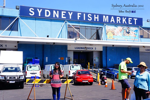 Day 2 - Sydney Fish Market 06