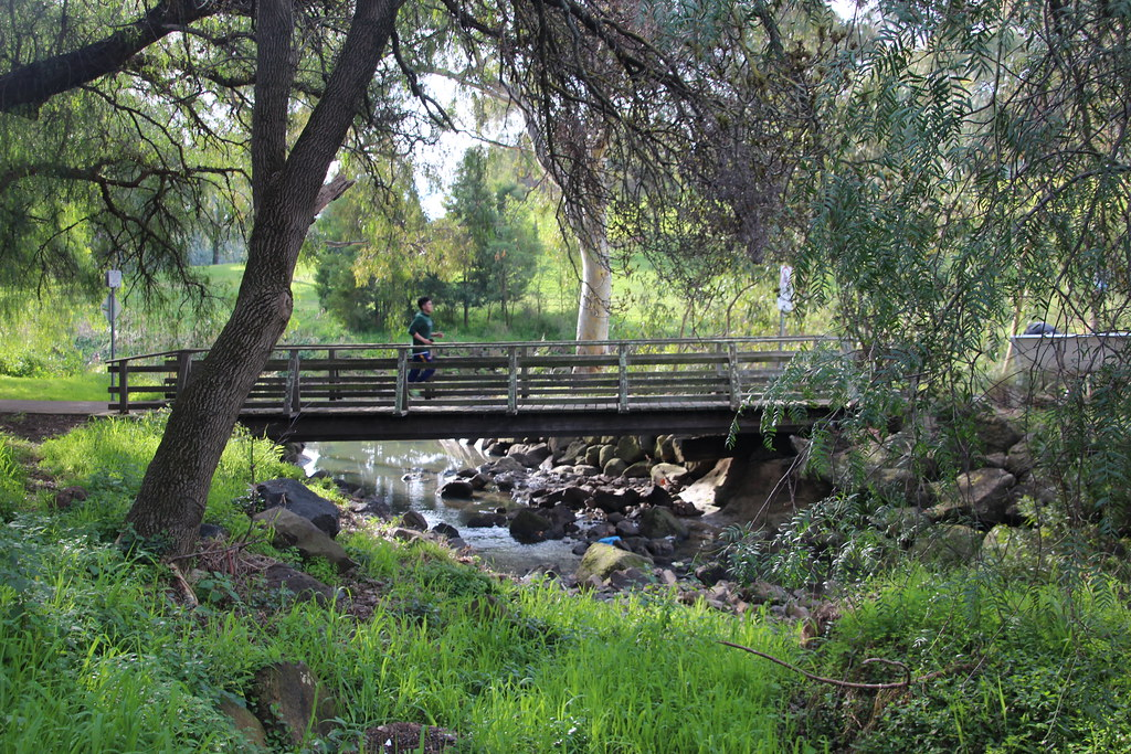 last bridge before merri creek 100 photos of merlynston. Black Bedroom Furniture Sets. Home Design Ideas
