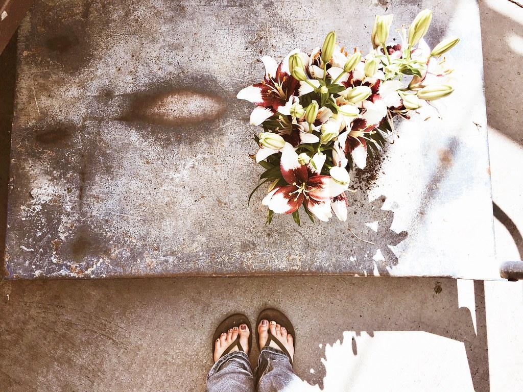 flowergardening05272017