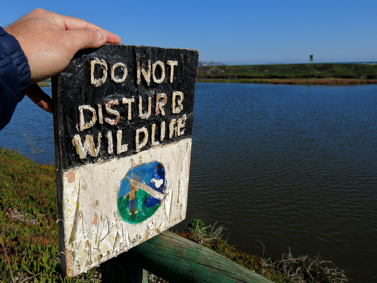 Do not disturb wild life