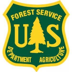 forest service