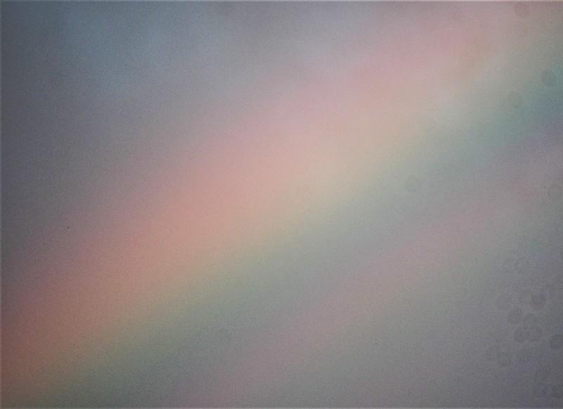Rainbow 20.05 (6)