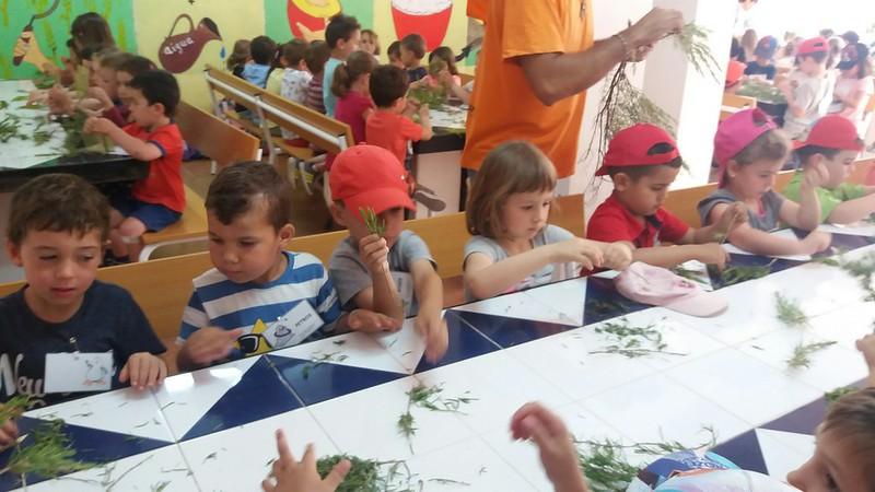 Rasquera Educació Infantil