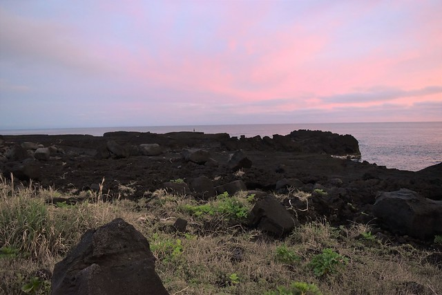 八丈島・南原千畳岩海岸