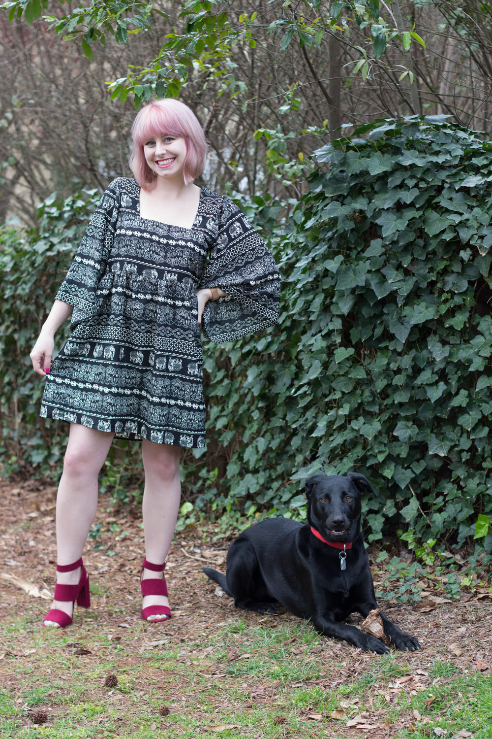 Pink Hair, Boohoo Elephant Print Dress and Colorful Heels with a Black Lab Mix