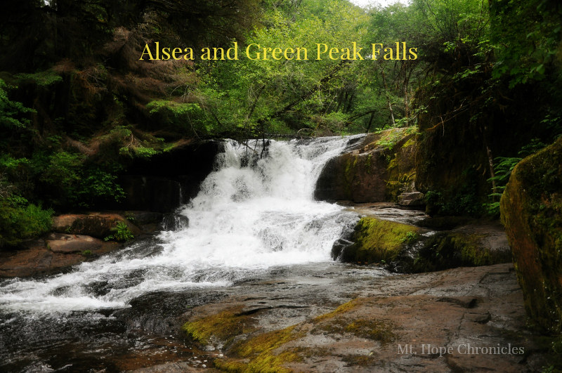 Alsea and Green Peak Falls Hike @ Mt. Hope Chronicles
