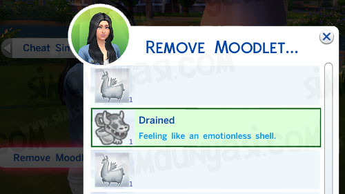 Remove Moodlet 2