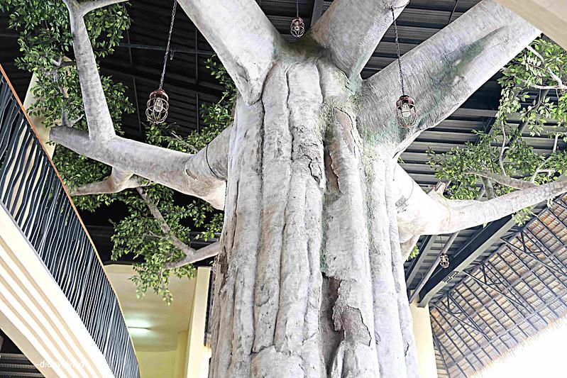 baobab resort 12