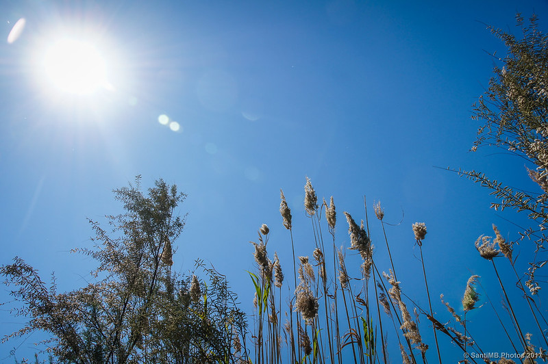 Un día soleado