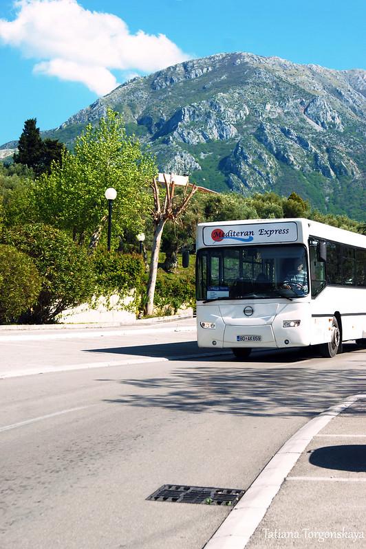"Автобус ""Stari Bar - Čanj"""