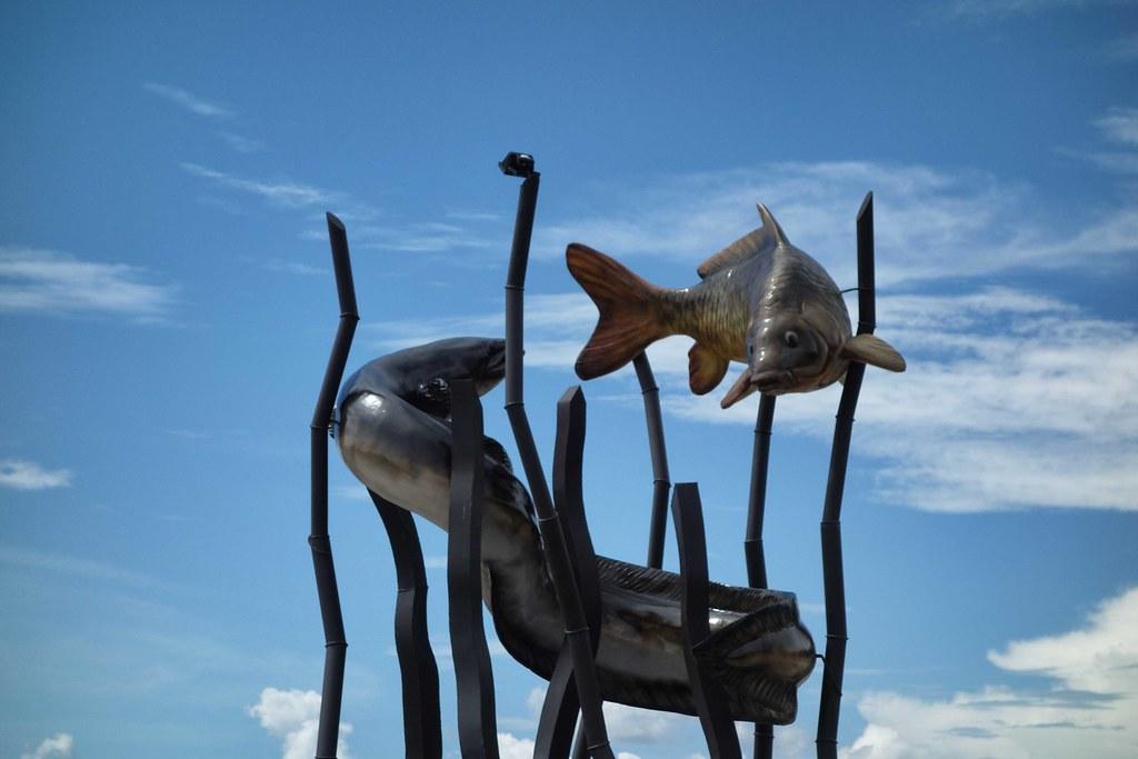 Tentena - Embleme - Anguilles