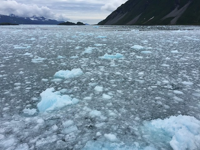 Fiordo helado en Kenai Fjords National Park (Alaska)