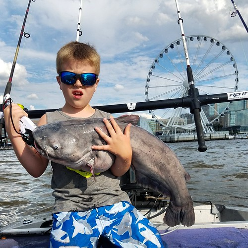 Weekly fishing report june 28 for Dnr weekly fishing report