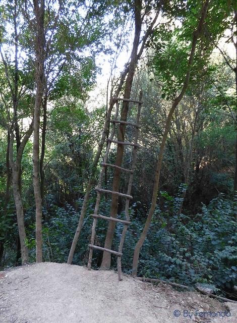 Xaragall Del Foió -04- La Escalera