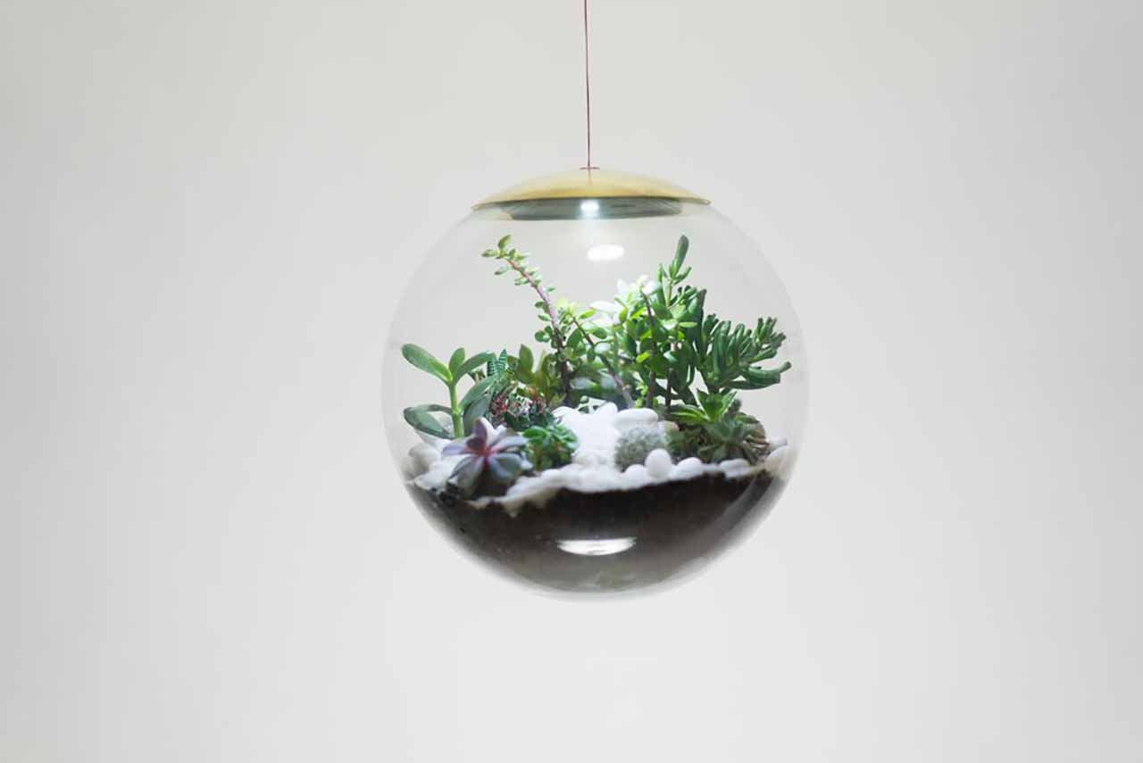 Create Your Own Mini-Garden With These Terrarium Lamps: Richard Clarkson, who gained an excessive popularity by his previous project cloud-lamp speaker, gets the attention of his fans this time by his new project, Globe. Globe started as a terrarium project as a hand-made glass workshop that hosts plants not requiring much maintenance. Spheres that Richard Clarkson Studio's creative team designed as a place to live for ferns and mosses are further developed for functions beyond this purpose shortly.