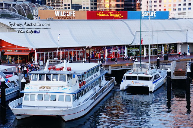 Day 1 - Sydney Darling Harbour 02