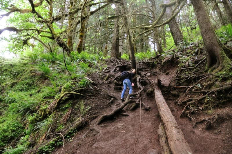 Alsea and Green Peak Falls Rope Climbing @ Mt. Hope Chronicles