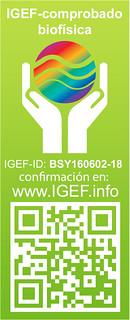 IGEF-Pruefsiegel-BSY-SP