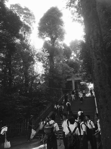 朝の神社でゴミ拾い