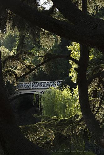 Villa Durazzo Pallavicini: Il Ponte Romano sul Lago Grande