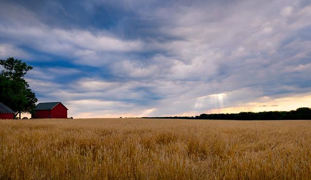 Farm Photos On Flickr | Flickr