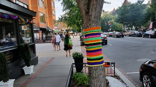Yarn bombing on the 1600 block of 17th Street NW, Dupont Circle