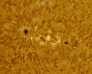 SunSpot2663_HA_Colored_06172017 | by Mwise1023