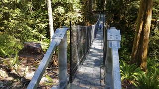 The Great Trail Suspension Bridge