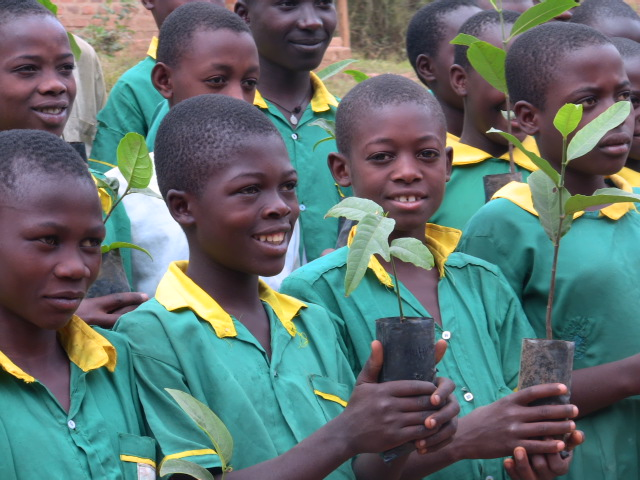School children receive food trees