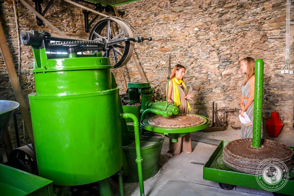 Traditional Olive Oil Press at D'Origem