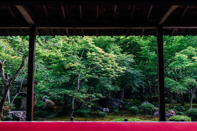 Kyoto_Enkoji_03