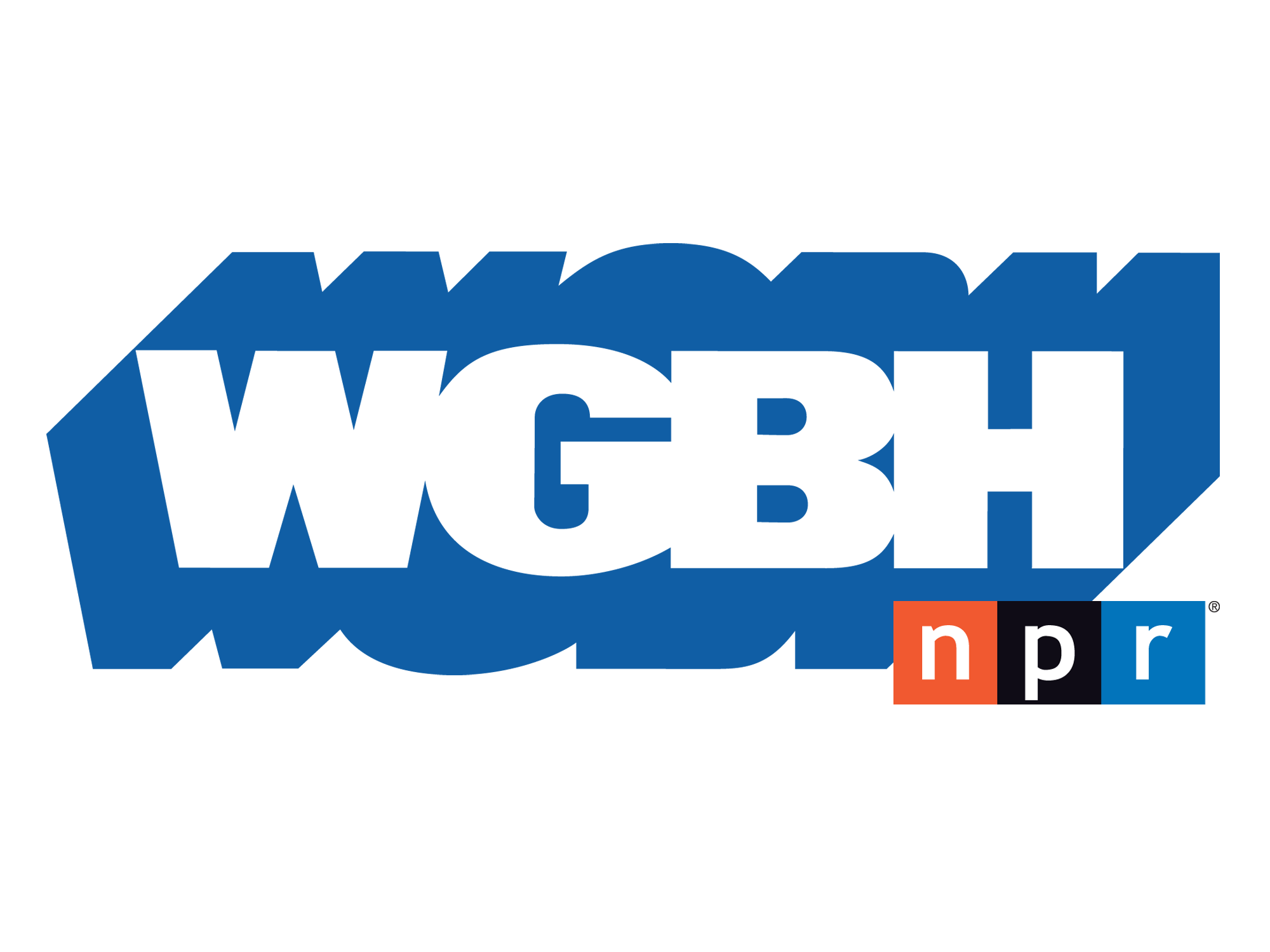 Logo, Speaking Engagement_NPR_2000w_FAV mounted