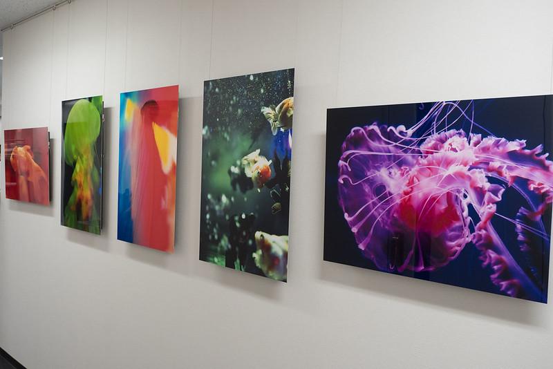 Nana_Misaki_Photo_Exhibition-4