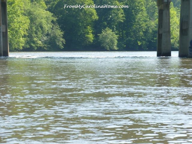 French Broad River Canoe Trip at From My Carolina Home