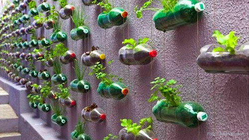 jardin-vertical-botellas