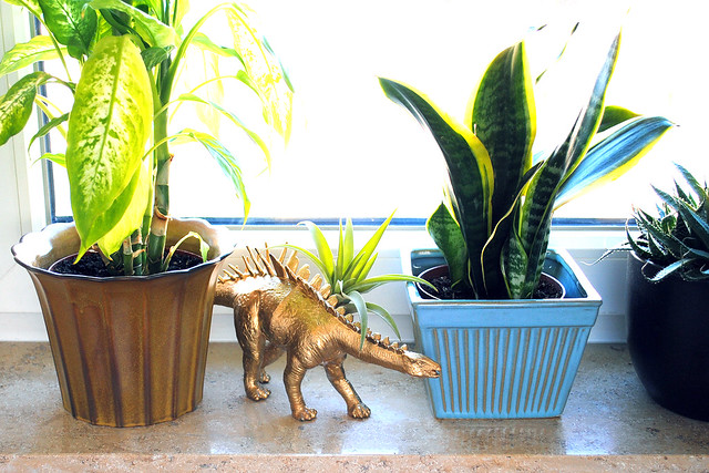 Vintage pots and a dinosaur pot