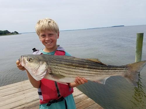 Photo of: Child holding large fish