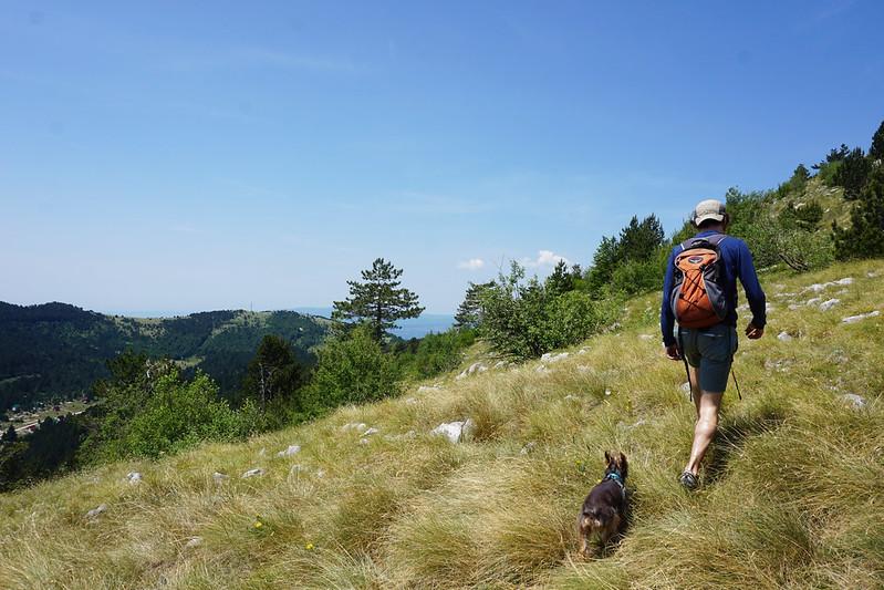 Chad and Luna hiking