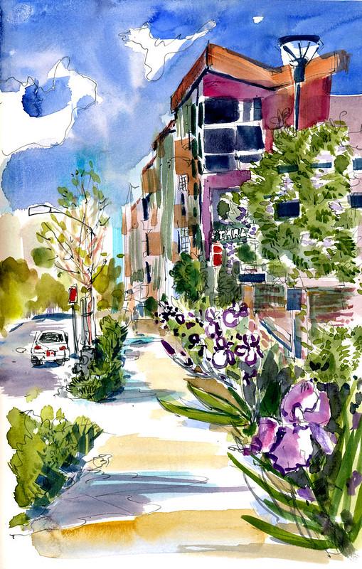 Sketchbook #104: Irises
