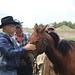 A veteran and a horse.