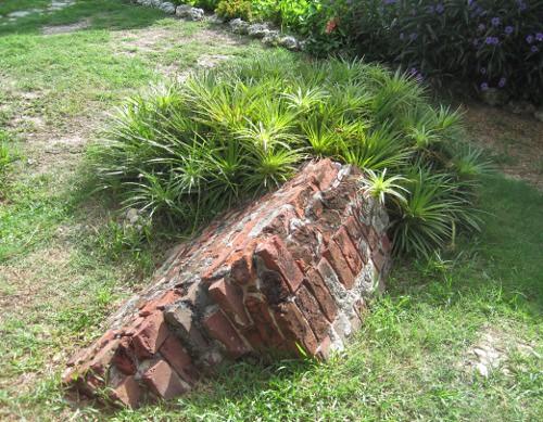 bromeliad_brick