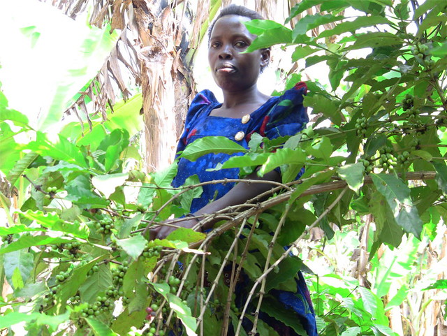 A local farmer, beneficiary of permaculture training