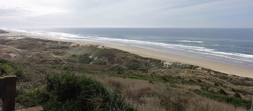 Image shows a strip of sand dunes covered in grass, with a strip of sandy beach, and the Pacific Ocean to the right.
