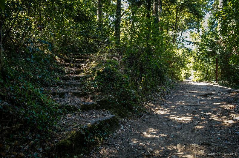 Cruce de caminos cerca de la Capela de Annas del Via Crucis de Buçaco